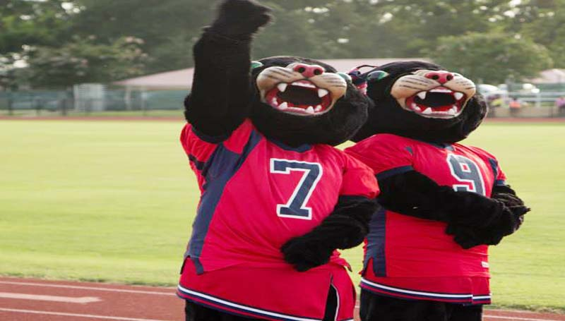 0820 BHS PAnther mascots