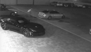 A photo taken from video surveillance shows the suspect.