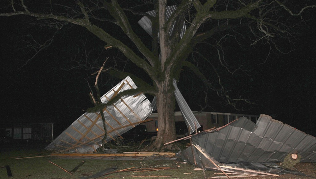 The roof of a barn/shed was torn off and blown into a tree at 3723 Old Red Star Road.