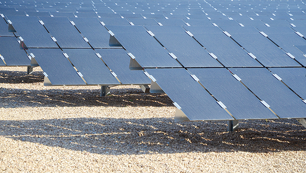 Photo by Luke Horton / Brookhaven is just one of three locations where Entergy Mississippi will be testing out solar panel technology.