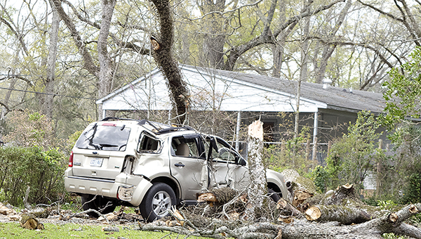 Photo by Julia Miller / A tree limb fell in a Church Street driveway around 11 a.m. on Wednesday totaling the residents' SUV. The two were backing out of their driveway when the limb fell from a tree in the neighbor's yard. Neither passenger was injured, only very shaken up.