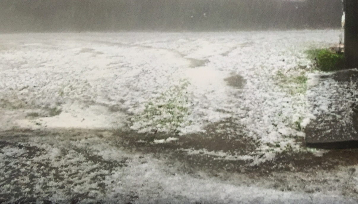 Elizabeth Wesse submitted this photo of hail at her house on Field Lark Lane.