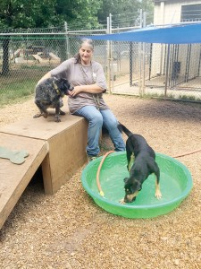 Photo submitted/Rita Acy, shelter manager for the Brookhaven Animal Rescue League Adoption Center, plays with Chase while Teonia cools off in the kiddie pool Wednesday.