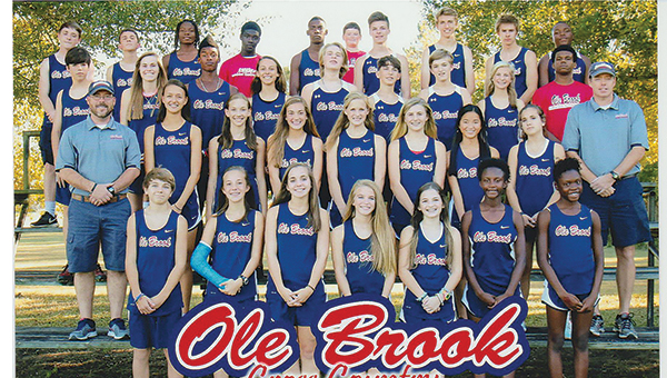 """Photo submitted/ All proceeds from the first """"Run with the Panthers"""" event will benefit the 2015 district champion Brookhaven high school cross county teams, pictured above."""