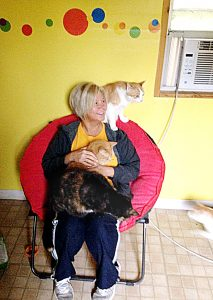 """Photo submitted Belinda """"Dinki"""" Davis plays with some of the 36 cats she's rescued and kept in two covered fenced kennels in her back yard with heat lamps and air conditioners. Dogs got in the locked gate of one of the pens last week and mauled 16 cats to death."""