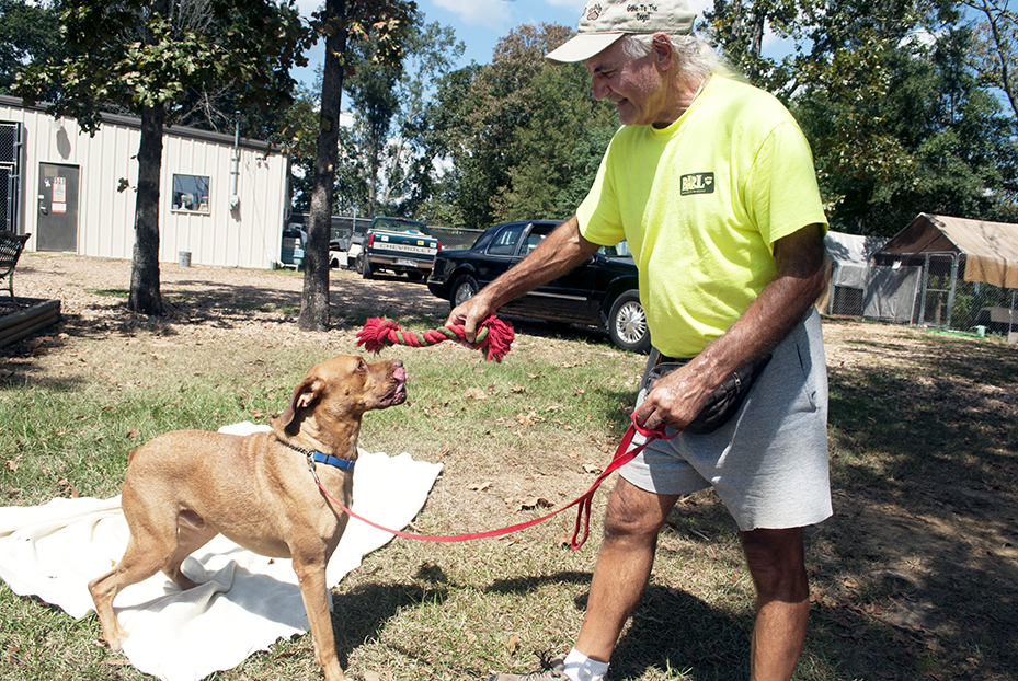 Daily Leader file photos / BARL's trainer Roger Lambright plays with a three-legged dog the shelter rehomed in 2015.